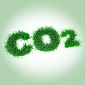 Bæredygtig hverdag
